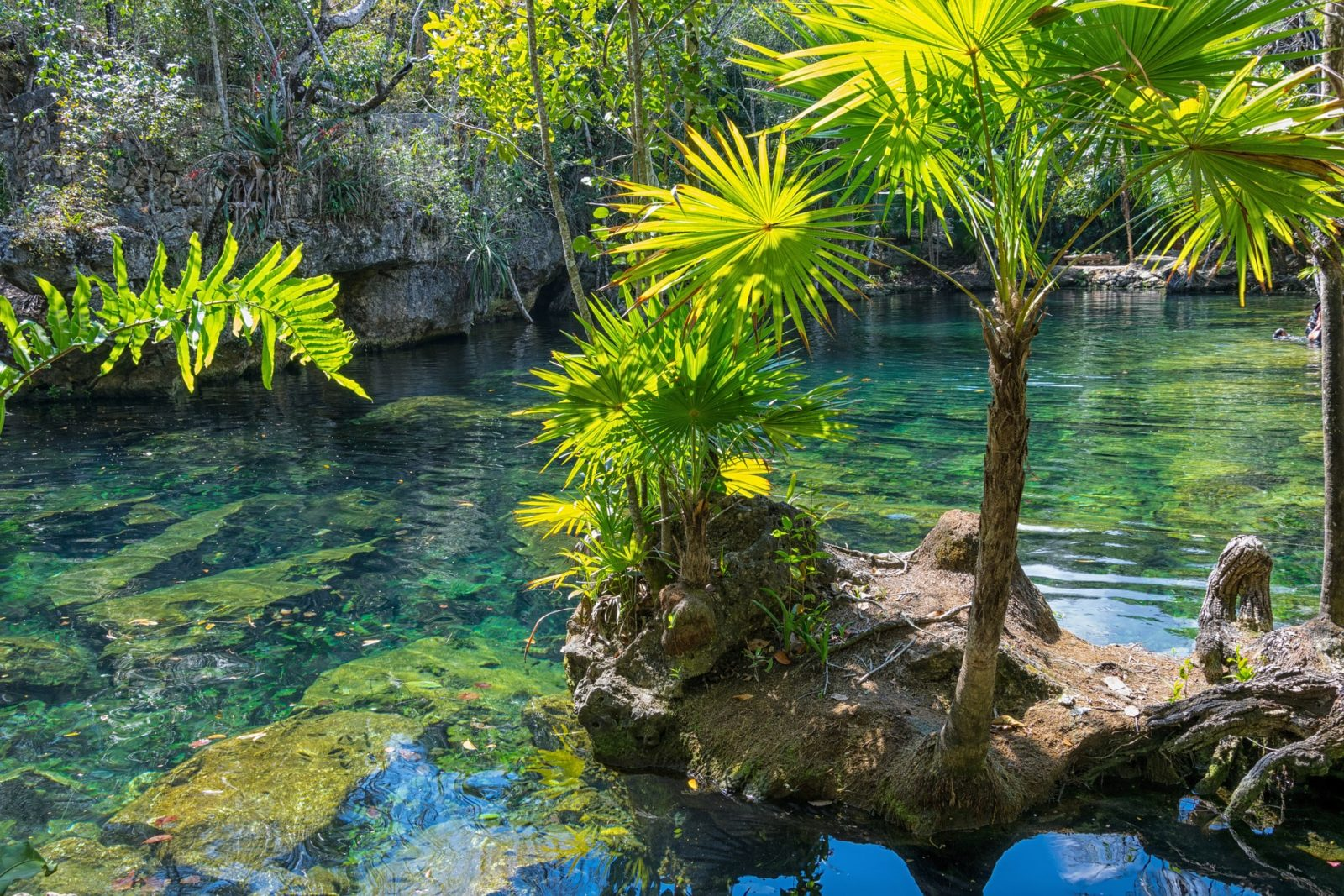 Mexico: ISTO Americas opens the Forum on Sustainable and Accessible Tourism